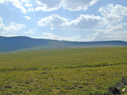 The Blackstone Uplands were once part of the mammoth steppe of Beringia.