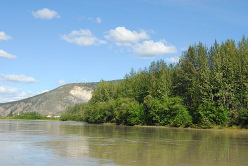 Yukon River by Tr'ochëk during high water.