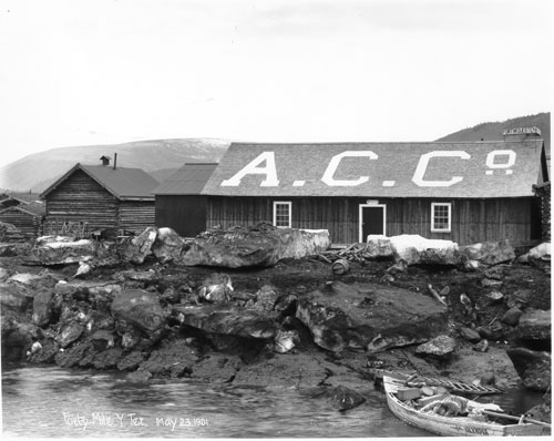 Alaska Commercial Co. warehouses at Forty Mile during spring break-up, 23 May 1901.