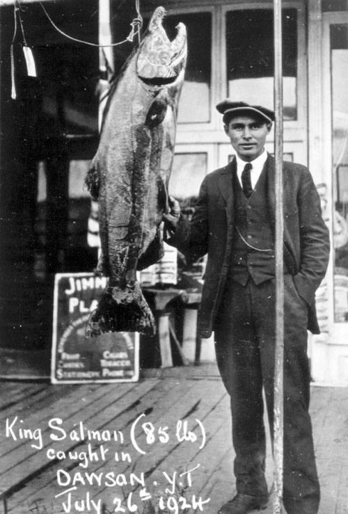 A proud fisherman displays his record King Salmon at Dawson City, 1924.