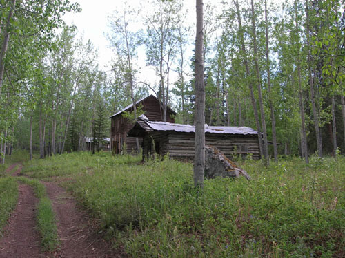 This small cabin was Forty Mile's telegraph office and post office in the early 1900s.