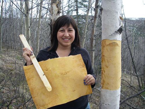 Madeline deRepentigny harvesting birch bark to sheath a canoe.
