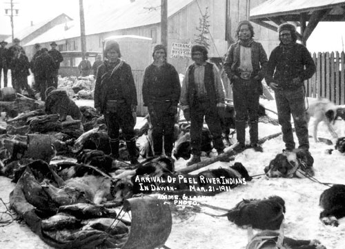Gwich'in men from the Peel River area in Dawson with loads of caribou meat, 21 March 1911.